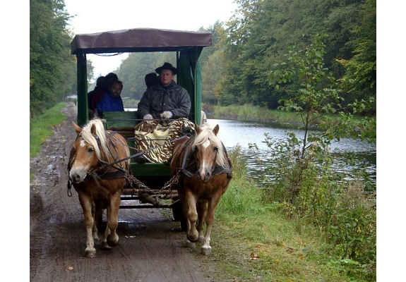 Carriage ride through the Lewitz in Banzkow